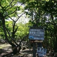 皆子山(標高971米)