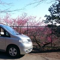 関東UHFコンテスト@城山湖