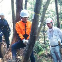 第18期森林ボランティア青年リーダー養成講座 in東京 中間報告