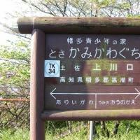 TK34土佐上川口(高知県)とさかみかわぐち