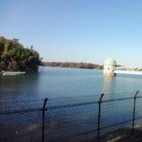 又、多摩湖畔