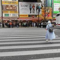 秋葉原、6車線の中央通りを 突っ切る人 : 信号は赤です