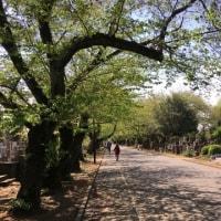 東京物語(歩いて散策)その3