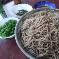 最近の麺事情(4月)