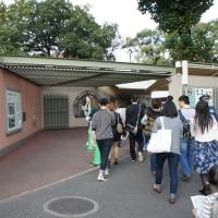 久々の晴れの日、上野動物園へ