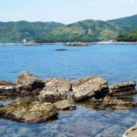 磯遊び2017~海の恵み