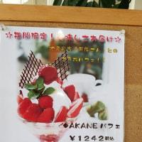 一期 いちご巡り 知多半島 No.68