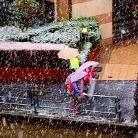 都内で積雪 早すぎるねえ