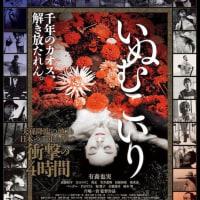 映画『いぬむこいり』 5月13日(土)より公開
