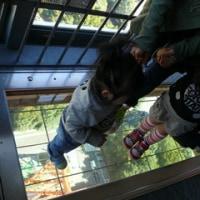 「東京タワー」