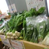 野菜がいっぱい♫