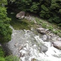 雨の面河渓関門(6月20日)