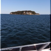 東京湾の無人島