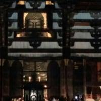 東大寺大仏殿 2017年元旦