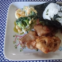 豚肉の天ぷらも冷凍室からそのまま~♪