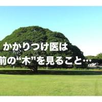 「森」をみること、「木」をみること… ^_^