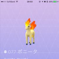 【 #ポケモンGO 】本日、新たにGETしたポケモンたち〜プテラ・パウワウ・ポニータ+α