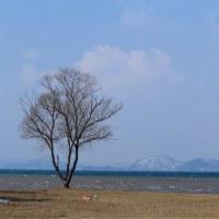 猪苗代湖 天神浜の湖岸です