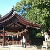【旅】【遠征】【神社】【丹波たんなん味覚まつり】