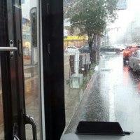 ミゾレとヒョウと暴雨の日