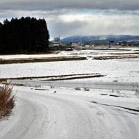 17-01-21 天気予報