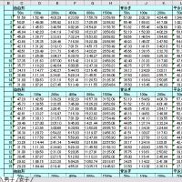 2011年度 資格級一覧(続)