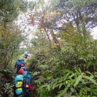 24 宮島(紅葉谷~獅子岩~かや谷~紅葉谷)登山  下山路の様子