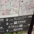 22日京都の写真