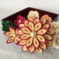 つまみ細工髪飾り  桜と菊の共演  薔薇色