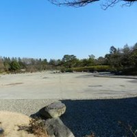 昭和記念公園(梅)