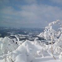恒例のスキーツアー 7