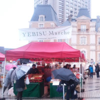 441煎 3月26日YEBISU Marche 出店しました