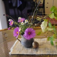 我が家を彩るお花たち