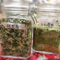 野草がもりもり育つ季節です( ´ ▽ ` )☆
