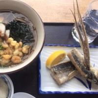 屋久島に行って来ました。最終3日目、白谷雲水峡編
