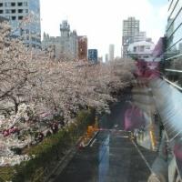 アフタヌーンティー&声紋心理分析 by雅叙園