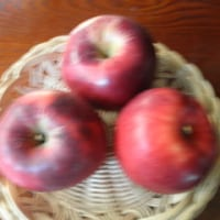 市田柿と紅玉