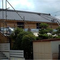 屋根が葺き変わってる