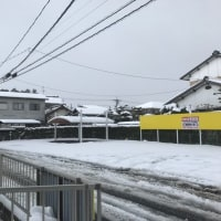 雪・雪・雪・・・