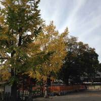 京都 東寺を散策 弘法大師(空海)の真言宗のお寺