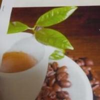 4月から渡cafeスタートします?