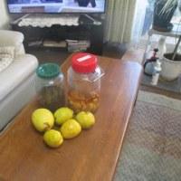 12/8 ф 我が家で採れた【カリン】30個と【レモン】100個 ф