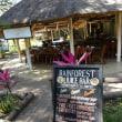 南部アフリカ・ツアー10(ビクトリアの滝・ジンバブエ)