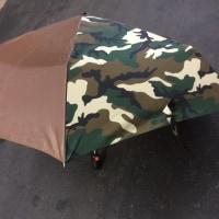 傘のご報告