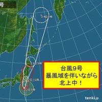 台風9号はかすりもしなかった