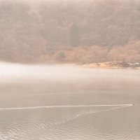 霧の田貫湖 陣馬の滝あたりの湧水