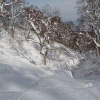 野沢温泉へスキー
