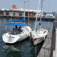 別府北浜ヨットハーバー~北へ港巡り今回は武蔵漁港です