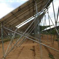 パナックス 第二発電所 除草剤散布効果