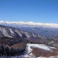 【聖山】 林道聖山頂線を歩く ~ちょっとだけ アニマルトラッキング(体験版)~